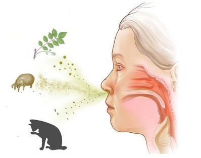 У ребенка аллергический кашель что делать