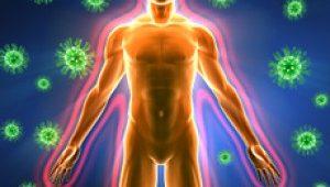 Укрепление иммунитета взрослого человека