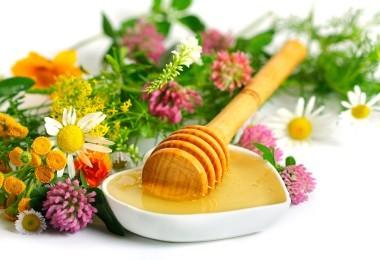 Мед от простудных заболеваний