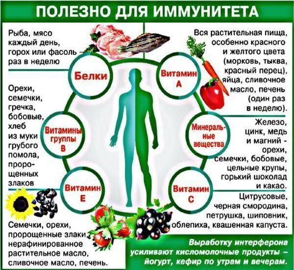 что полезно для укрепления иммунитета