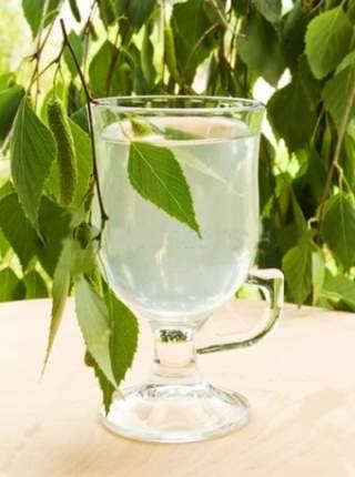 Чем полезен березовый сок для организма человека