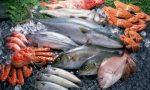 Какая рыба самая полезная для человека и почему стоит ее употреблять