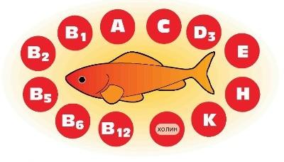 Полезный состав рыбной продукции