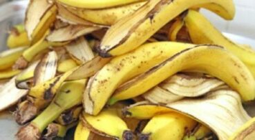 Бананы польза и вред для здоровья женщины